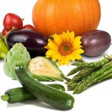 Hortaliza de Fruto