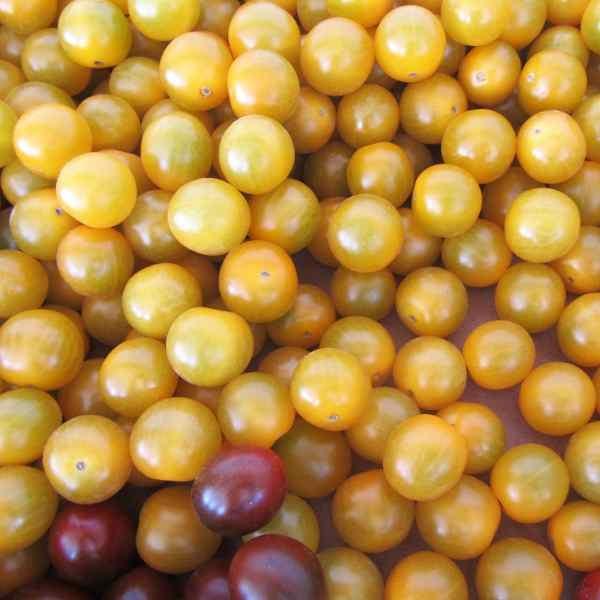 Tomate cherry amarillo granel fruteria a domicilio